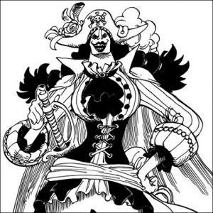 黒ひげ海賊団メンバー全員の能力を解説
